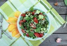 Verse lichte de lente plantaardige salade Stock Afbeelding