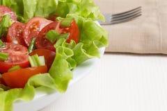 Verse lichte salade met kersentomaten en bieslook Stock Foto's