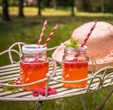 Verse limonade met suiker Stock Foto