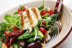 Verse luxueuze salade royalty-vrije stock afbeelding