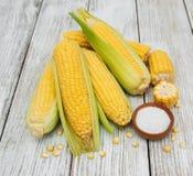 Verse maïskolven Stock Afbeeldingen