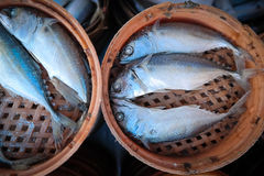 Verse makreel in bamboemand Royalty-vrije Stock Afbeelding