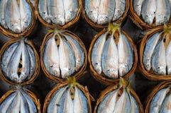 Verse makreel in mand in markt, Thailand Royalty-vrije Stock Afbeelding