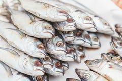 Verse Makreel op een marktkraam in Thailand Royalty-vrije Stock Foto