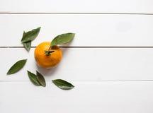 Verse mandarijn met bladeren op witte houten achtergrondexemplaarruimte voor product of tekst hoogste mening Stock Afbeeldingen