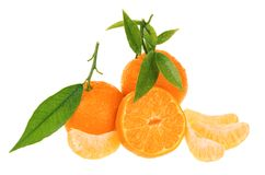 Verse mandarijnen royalty-vrije stock afbeelding