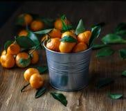 Verse mandarijnen met groene bladeren in een emmer op houten lijst Royalty-vrije Stock Afbeeldingen