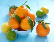 Verse mandarins in een kom Stock Afbeelding