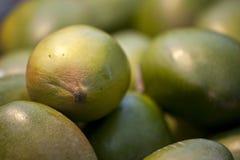 Verse mango Royalty-vrije Stock Foto's