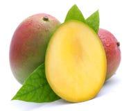 Verse mango Royalty-vrije Stock Afbeeldingen
