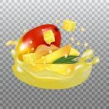 Verse Mango en sapplons Fruit 3d realistische vector op transparante achtergrond vector illustratie
