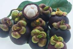 Verse mangostan Stock Fotografie