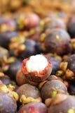 Verse mangostan in de Markt Royalty-vrije Stock Afbeeldingen