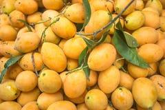 Verse mangovruchten in de markt stock afbeelding