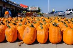 Verse markt in Wisconsin, de V.S. Stock Foto