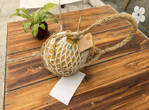 Verse meloen in hand mand Royalty-vrije Stock Fotografie