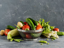Verse mengeling van groenten Royalty-vrije Stock Foto