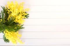Verse mimosabloem op houten lijst royalty-vrije stock fotografie