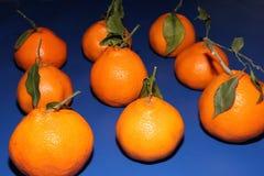 Verse Mineola-mandarijnen met bladeren Het concept het gezonde eten, citrusvrucht en vitamine C royalty-vrije stock foto