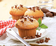 Verse muffins stock afbeelding