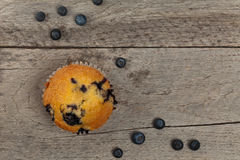 Verse Muffins Royalty-vrije Stock Foto