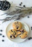 Verse Muffins Stock Foto's