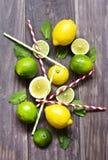 Verse muntbladeren met kalk en citroen voor het voorbereiden van mojito Royalty-vrije Stock Afbeeldingen