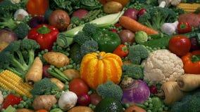 Verse Natte Groenten in Kleurrijke Vertoning stock videobeelden