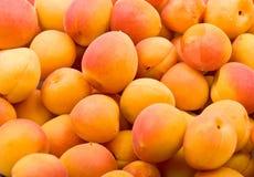 Verse natuurlijke abrikozenachtergrond Stock Afbeeldingen