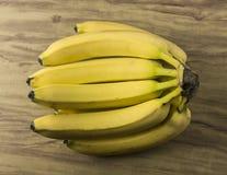 Verse natuurlijke banaanbos Stock Afbeelding