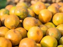 Verse natuurlijke sinaasappelen in markt, zoete en zure fruit Royalty-vrije Stock Foto