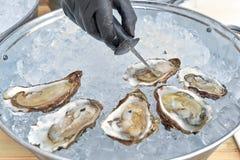 Verse oester gehouden met in hand mes open Royalty-vrije Stock Foto