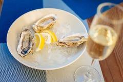Verse oesters en citroenen die in duidelijke witte plaat liggen Royalty-vrije Stock Afbeeldingen