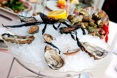 Verse oesters en zeevruchten Stock Afbeeldingen