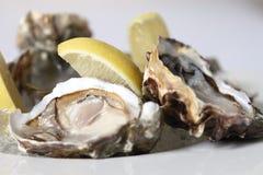 Verse oesters met citroen Stock Afbeeldingen