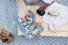 Verse oesters op metaaldienblad bij picknick stock afbeeldingen