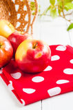 Verse oogst van appelen Het concept van het aardfruit Royalty-vrije Stock Afbeeldingen