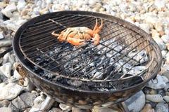 Verse oranje die krab op een barbecue wordt omgedraaid Stock Foto