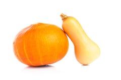 Verse oranje pompoen op witte achtergrond Stock Afbeelding
