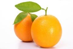 Verse Oranje vruchten Royalty-vrije Stock Afbeeldingen