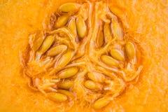 Verse organisch de helft van oranje kantaloepmeloen Stock Foto