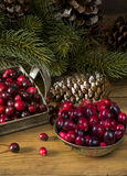 Verse organische Amerikaanse veenbessen voor Kerstmis Stock Afbeelding