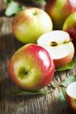 Verse organische appelen met bladeren Royalty-vrije Stock Afbeeldingen