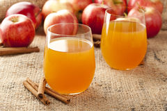 Verse Organische Apple-Cider stock foto