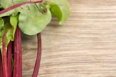 Verse organische biet Stock Foto