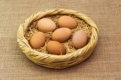 Verse organische die kippeneieren op de mand met stro worden gelegd Royalty-vrije Stock Foto's