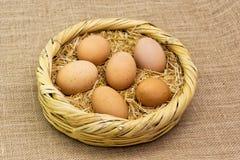 Verse organische die kippeneieren op de mand met stro worden gelegd Stock Foto's
