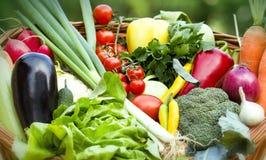 Verse organische groenten Royalty-vrije Stock Afbeeldingen