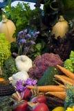 Verse organische groenten Stock Foto's