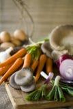 Verse organische groenten Stock Foto